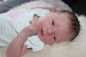Dr. Duesing | Babygalerie